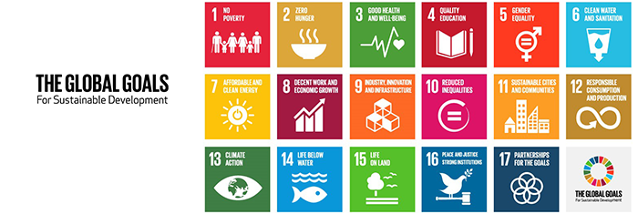 The Blum Center and the Sustainable Development Goals