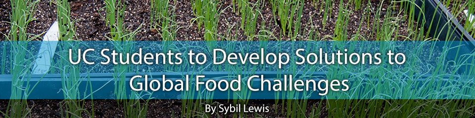 UC Students to Develop Solutions to Global Food Challenges